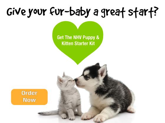 puppy-kitten-starter-kit