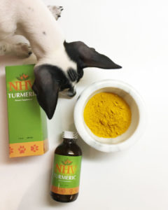 Shop NHV turmeric for dogs and cats