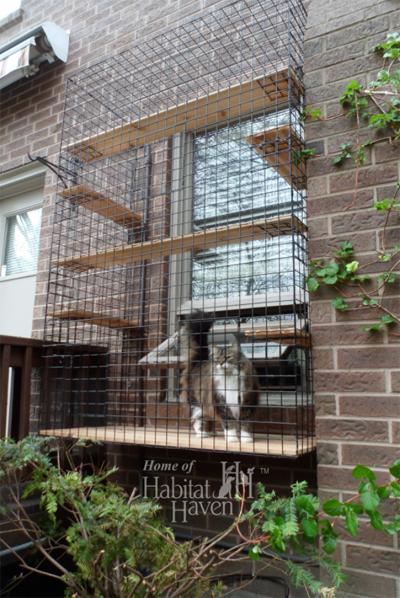 Habitat-haven---Window-enclosure