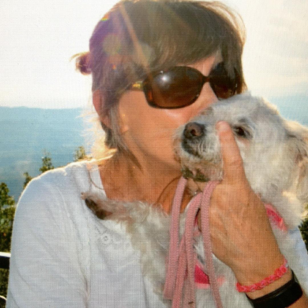 lucy cute dog cancer NHV Apso