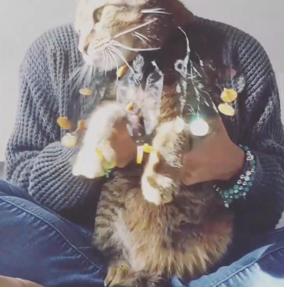 kitty mojito halloween nHV 2017