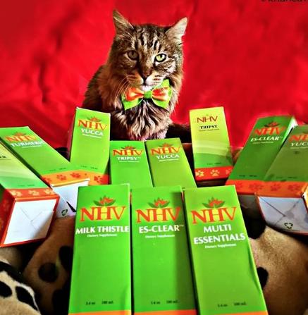 Genghis khan NHV supplements