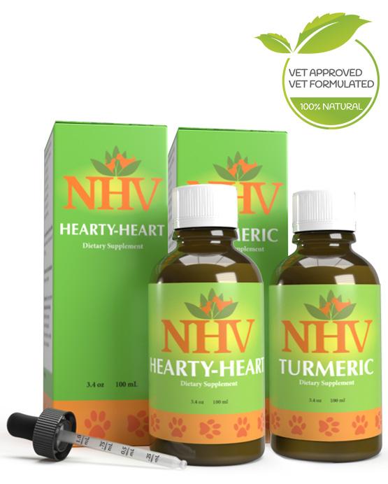 Vet approved heart murmur support