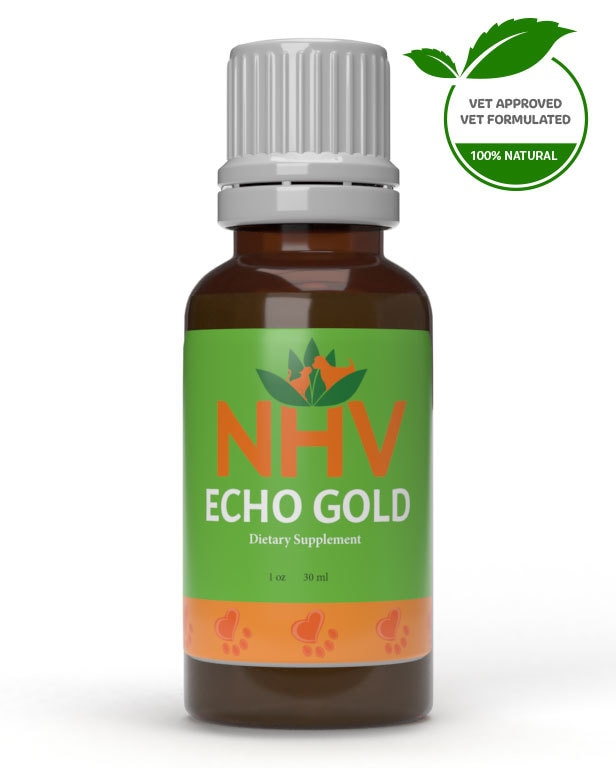 Echo Gold for dogs