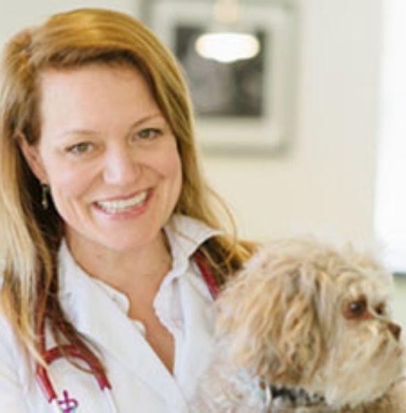 Dr. Hillary Cook DVM