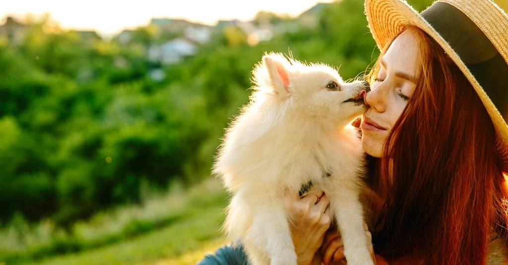 How to Become a More Eco-Friendly Pet Parent